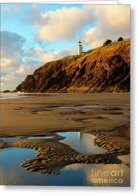 Reflection Puddle Greeting Card by Mike Dawson