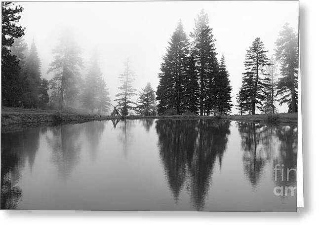 Peaceful Scene Greeting Cards - Reflections and Fog Greeting Card by Idaho Scenic Images Linda Lantzy