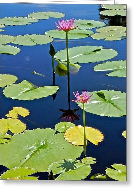 Religion Greeting Cards - Reflections and Shadow Greeting Card by Joe Wyman