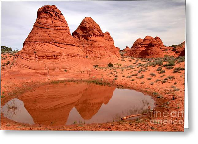Holes In Sandstone Greeting Cards - Reflections At Paw Hole Greeting Card by Adam Jewell