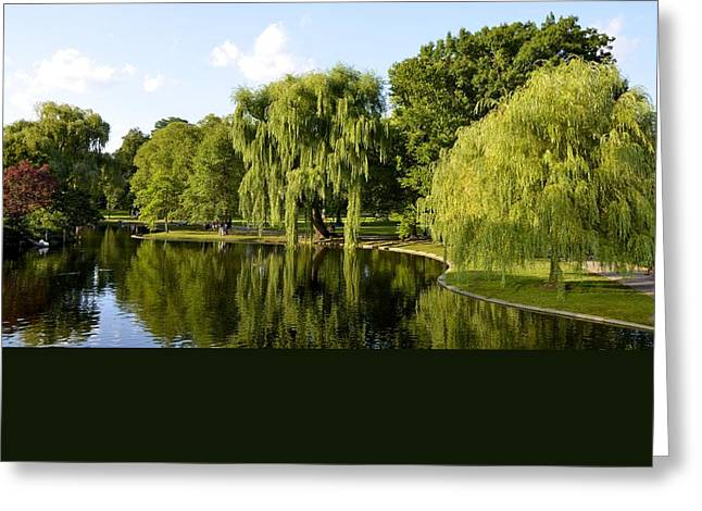 Corinne Rhode Greeting Cards - Reflections Greeting Card by Corinne Rhode