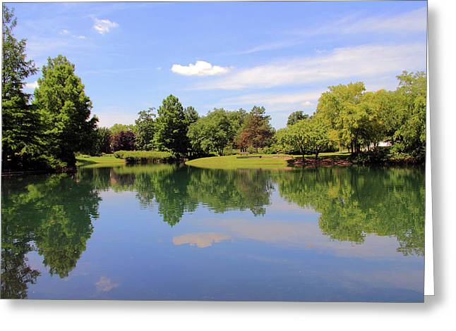 Pond In Park Greeting Cards - Reflections in a Pond Greeting Card by Angela Murdock