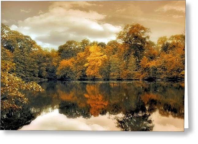 Seasonal Digital Greeting Cards - Reflections Greeting Card by Jessica Jenney