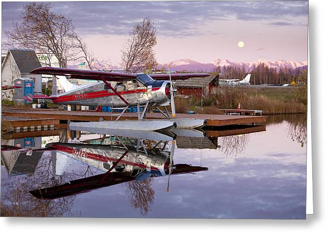 Moon Rise Greeting Cards - Reflections of a Beaver Greeting Card by Tim Grams