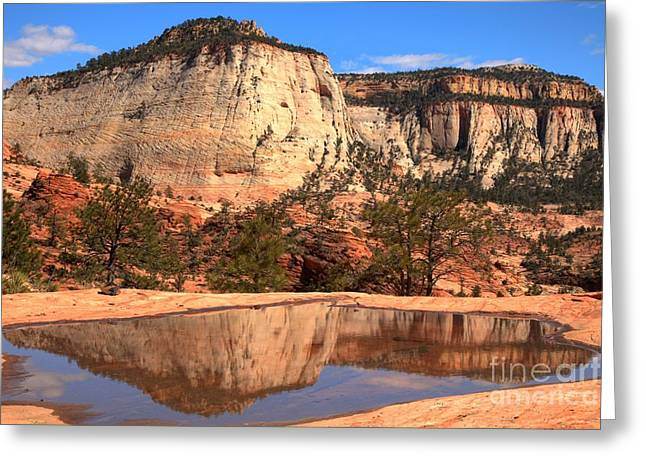 White Sandstone Greeting Cards - Reflections Of A Zion Icon Greeting Card by Adam Jewell