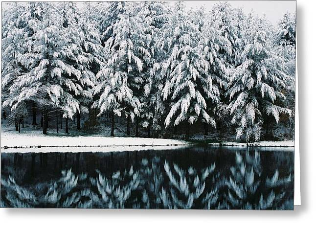 Jeff Moose Greeting Cards - Reflections of an Early Snow Greeting Card by Jeff Moose
