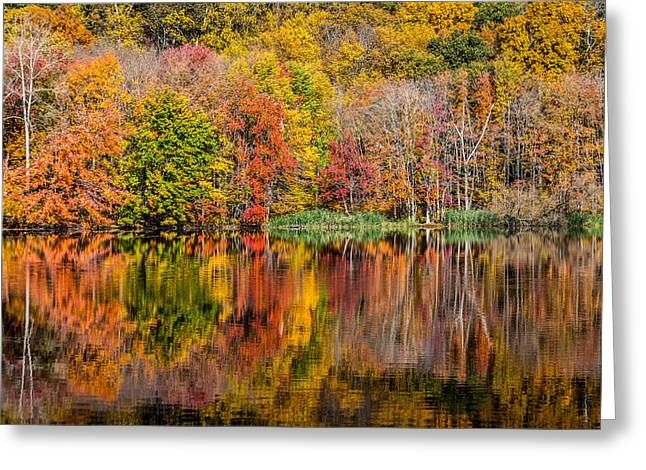 Reflections Of Autumn Greeting Card by Karol Livote