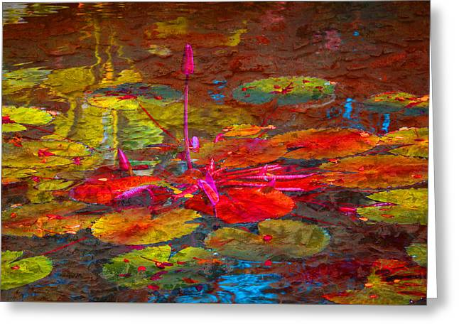 Reflections Of Greeting Card by Eric Ewing