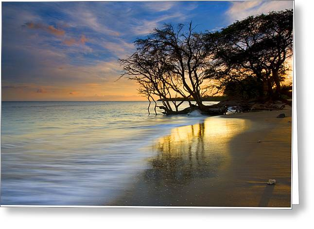 Reflections Of Paradise Greeting Card by Mike  Dawson