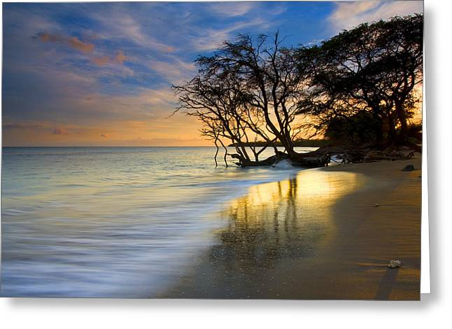 Sand Greeting Cards - Reflections of PAradise Greeting Card by Mike  Dawson