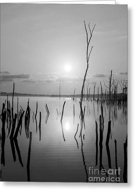 Eerie Greeting Cards - Reflections of Solitude Greeting Card by Debra Fedchin