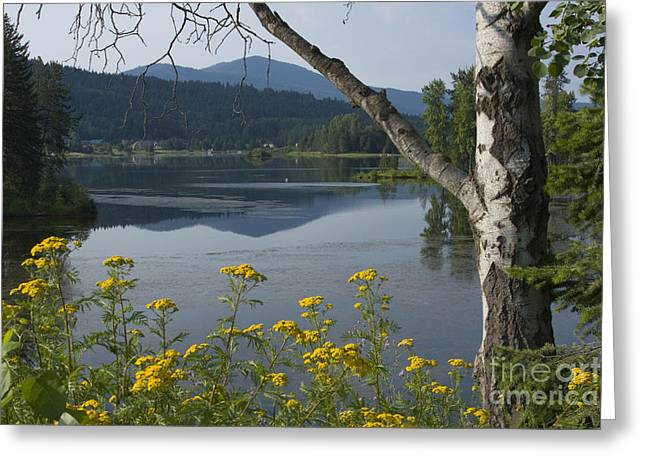 Sandpoint Greeting Cards - Reflections of Summer Greeting Card by Idaho Scenic Images Linda Lantzy