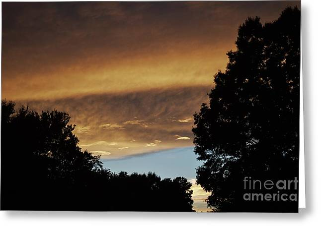 Reflections Of Sunlight  Greeting Card by JW Hanley