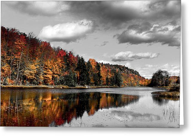Reflection On Pond Greeting Cards - Reflections on Bald Mountain Pond II Greeting Card by David Patterson