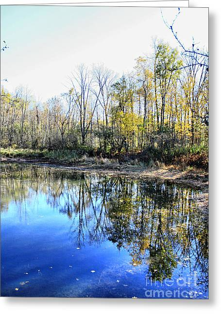 Autumn Prints Greeting Cards - Reflections On Blue Greeting Card by Deborah Benoit