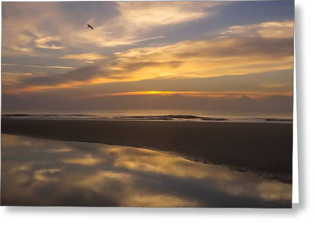 Sunset Posters Greeting Cards - Reflections on the beach Greeting Card by Zina Stromberg