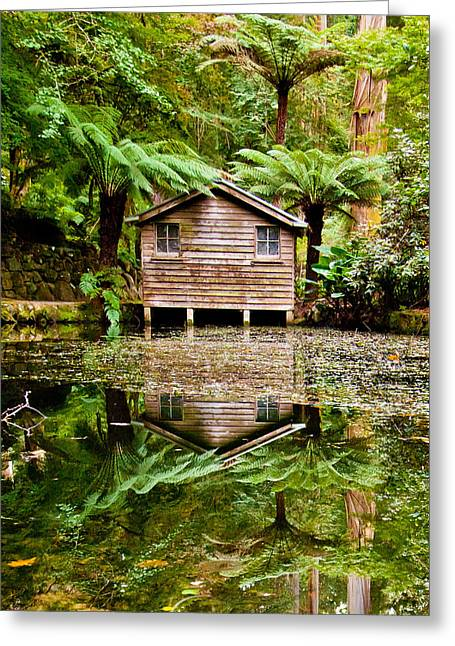 Reflections On The Pond Greeting Card by Az Jackson