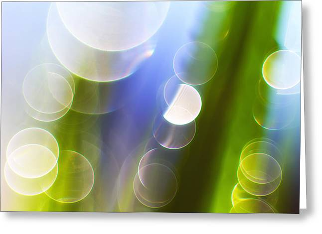 Reflections Greeting Card by Silke Magino