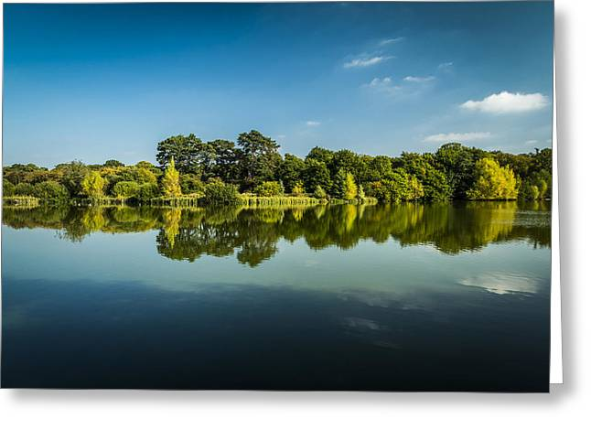 Reflecting Water Greeting Cards - Reflective Greeting Card by Andy Mayes