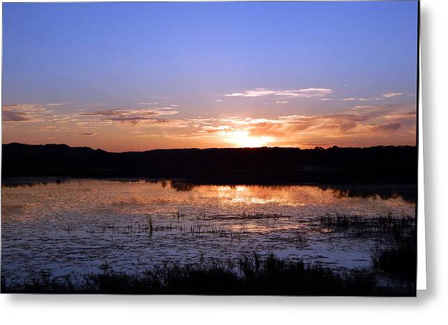 Gloaming Greeting Cards - Reflective Calm Greeting Card by Wild Thing