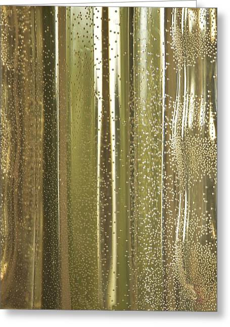 Water Jars Greeting Cards - Reflective In Gold-Green Greeting Card by Linda Brody