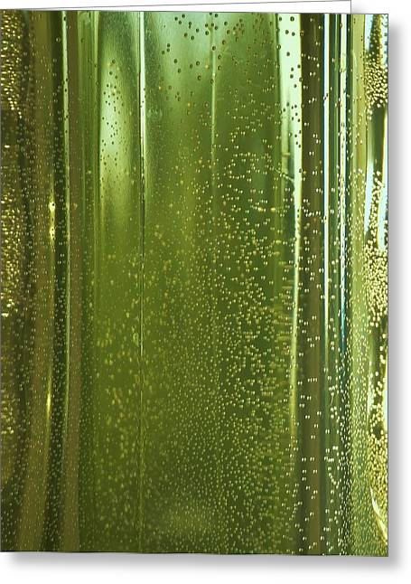 Water Jars Greeting Cards - Reflective in Green Greeting Card by Linda Brody