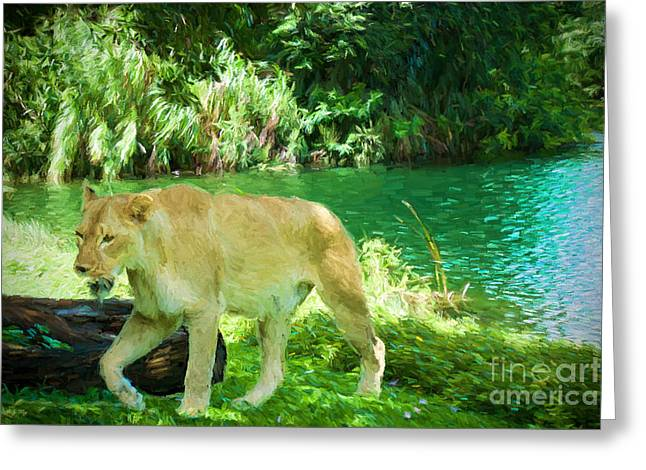 Lioness Greeting Cards - Refreshed   Greeting Card by Judy Kay