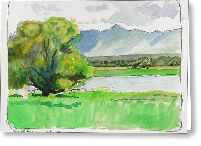 Wildlife Refuge. Paintings Greeting Cards - Refuge Tree Greeting Card by Robert Bissett