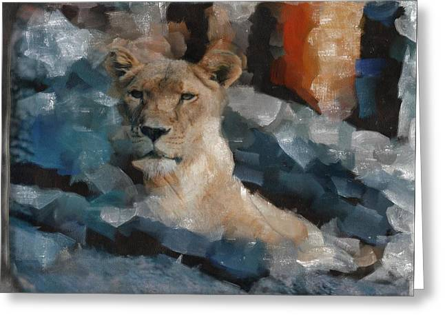 Lioness Greeting Cards - Regal In Blue Greeting Card by Judy Coggin