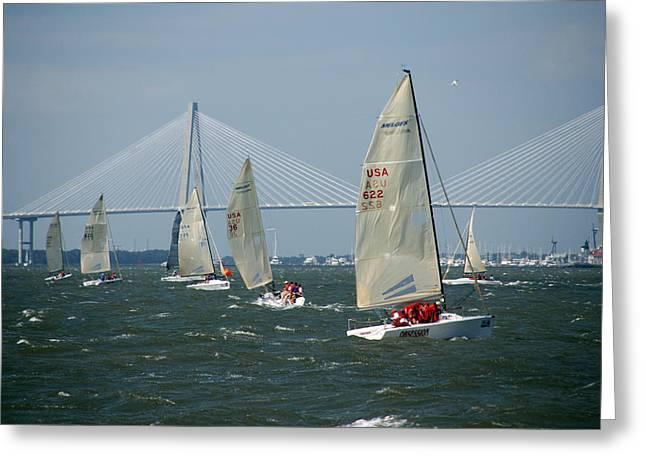 Regatta In Charleston Harbor Greeting Card by Susanne Van Hulst