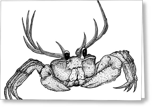 Bizarre Drawings Greeting Cards - Reincrab Greeting Card by Karl Addison