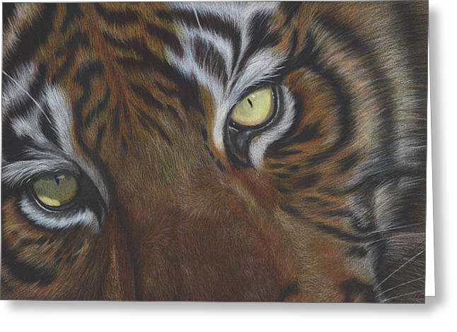 The Tiger Drawings Greeting Cards - Relax Greeting Card by Charne Gooch