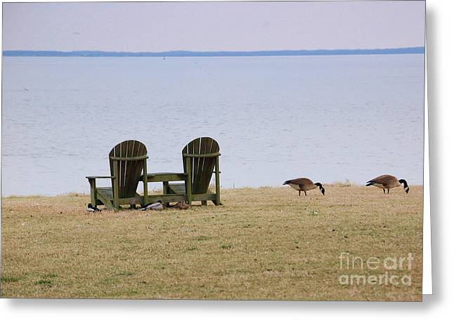 Chairs Greeting Cards - Relax Greeting Card by Debbi Granruth