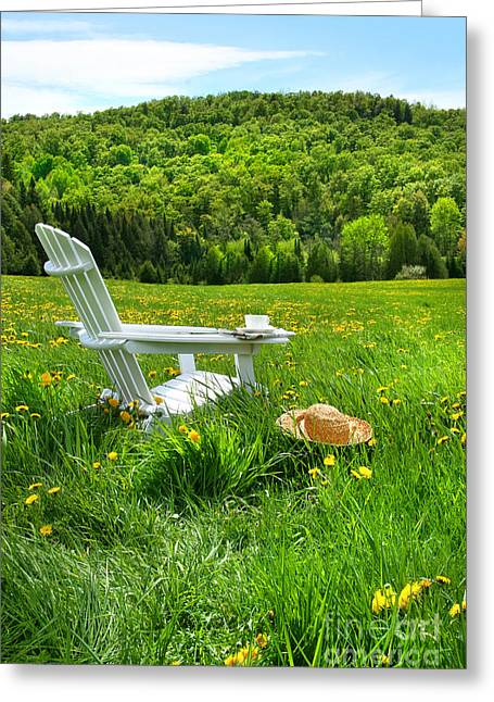 Straw Hat Greeting Cards - Relaxing on a summer chair in a field of tall grass  Greeting Card by Sandra Cunningham