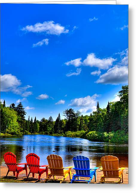 Tree Leaf On Water Greeting Cards - Relaxing on the Moose River Greeting Card by David Patterson