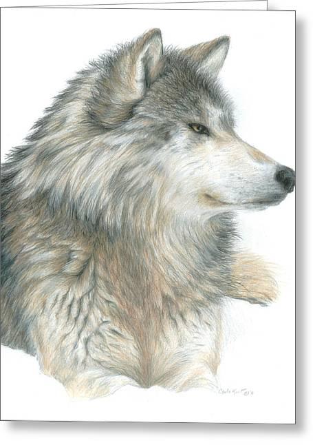 Relaxing Wolf Greeting Card by Carla Kurt