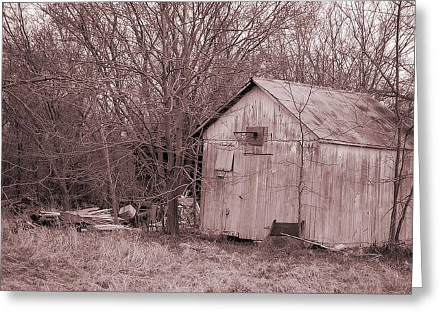 Tin Roof Greeting Cards - Remains of the Past Greeting Card by Jame Hayes