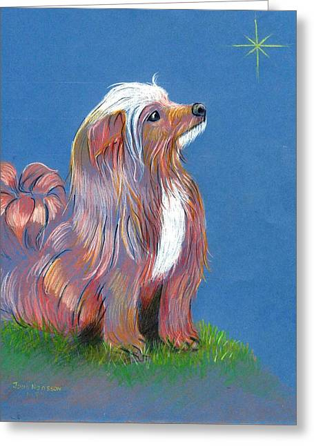 Toy Dog Greeting Cards - Renard and the Christmas Star Greeting Card by Joan Mansson