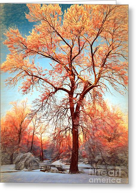 Winter Photos Paintings Greeting Cards - Renewal Greeting Card by Dan Carmichael