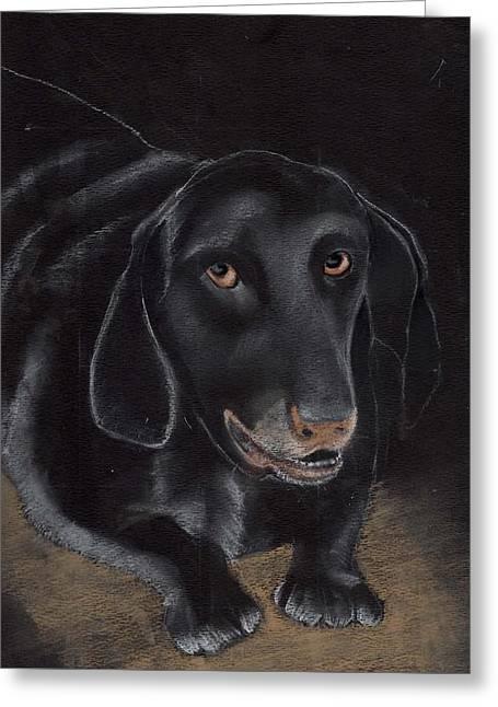 Mixed Labrador Retriever Pastels Greeting Cards - Repeta Greeting Card by Joan Mansson
