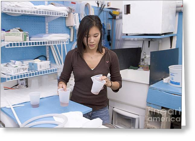 Brine Greeting Cards - Researcher Preparing Brine Shrimp Greeting Card by Inga Spence