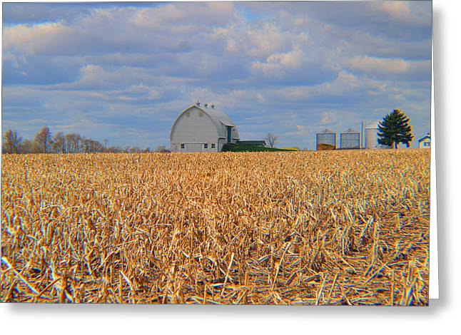 Lawn Chair Greeting Cards - Resting Cornfield Greeting Card by Tina M Wenger