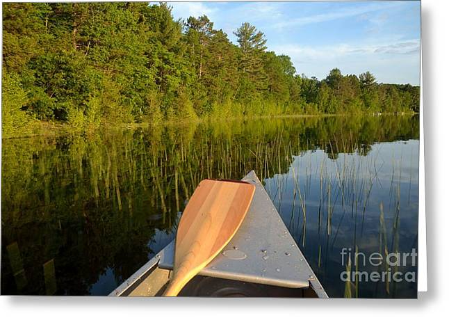 Canoe Greeting Cards - Resting Near the Shore Greeting Card by Nancy Anderson