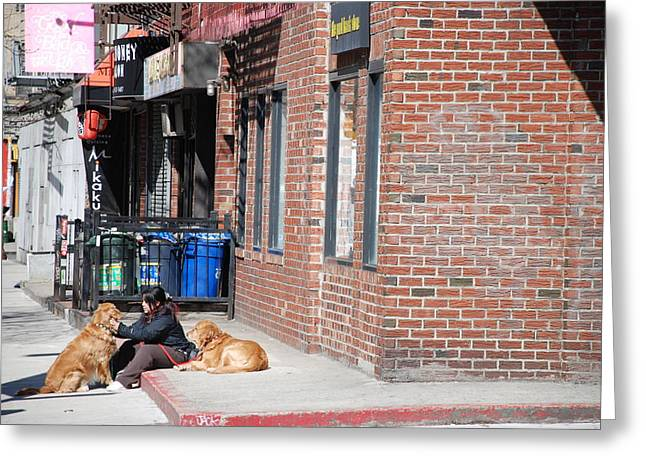 Resting On The Corner Greeting Card by Rob Hans