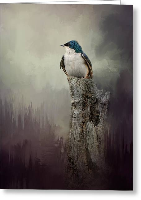 Swallow Photographs Greeting Cards - Resting Tree Swallow Greeting Card by Jai Johnson