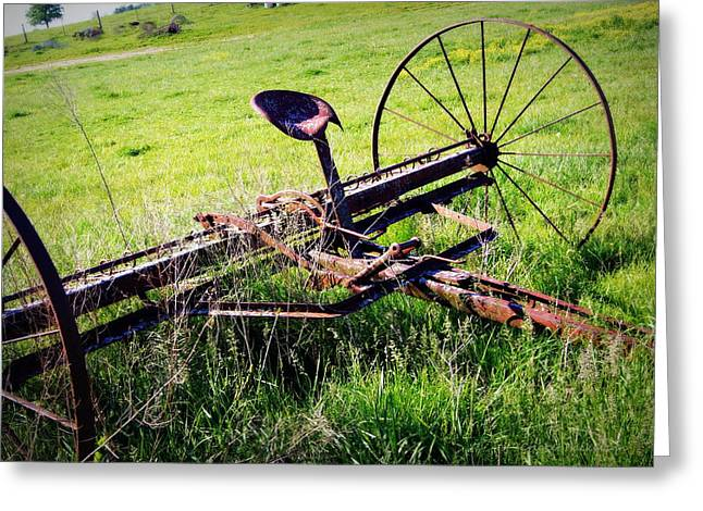 Hay Rake Greeting Cards - Retired Greeting Card by Cricket Hackmann