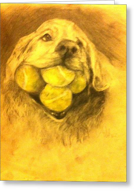 Tennis Drawings Greeting Cards - Retriever Greeting Card by Andrea Sher