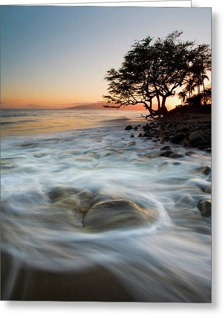 Lahaina Photographs Greeting Cards - Return to the Sea Greeting Card by Mike  Dawson