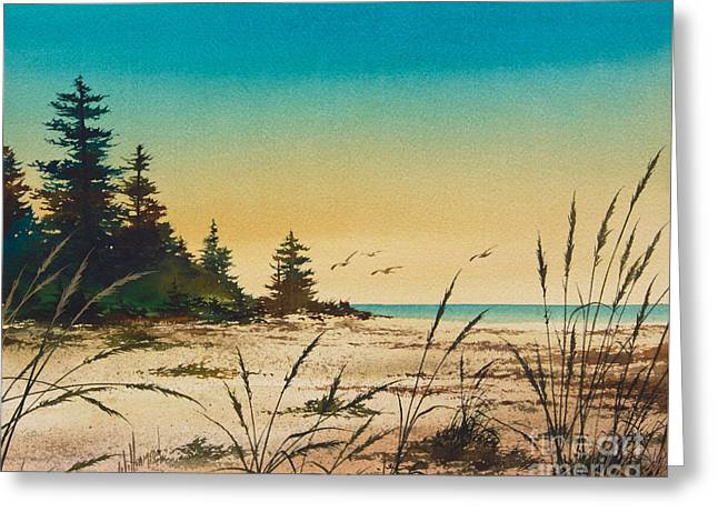 Landscape Framed Prints Greeting Cards - Return to the Shore Greeting Card by James Williamson