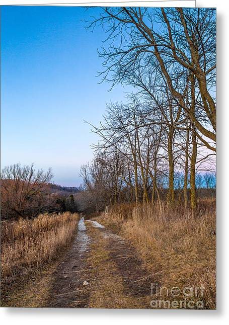 Nature Center Greeting Cards - Retzer Growing Road Greeting Card by Andrew Slater